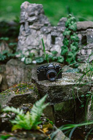 Camera, Retro, Vintage, Old, Film, Photography, Photo