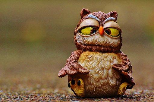 Owl, Funny, Squint, Sweet, Cute, Bird, Plumage, Animal