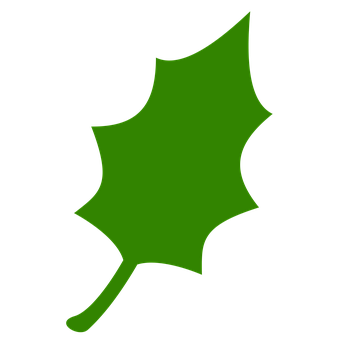 Icon, Leaf, Green, Tree, Nature, Leaves, Plant