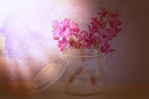 Flowers, Hyacinth, Pink, Glass, Decorative Glass, Vase
