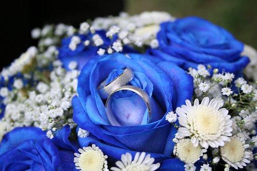 Roses, Rings, Liabilities