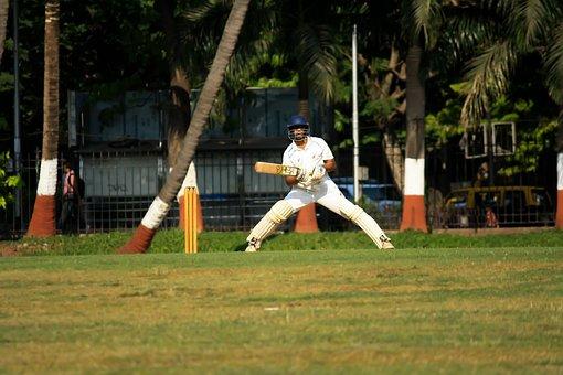 Cricket, Batsman, Player, Batting, Sports, Ball Game