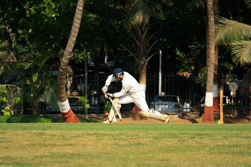 Cricket, Stroke, Batting, Batsman, Player, Sports