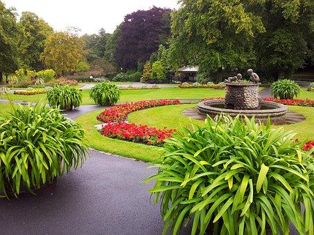 England, Flower, Flowers, Garden, Valley Gardens, Grass