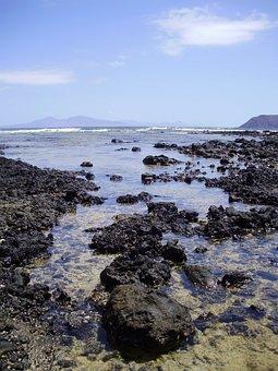 Ocean, Coast, Fuerteventura, Spain, Canary, Landscape