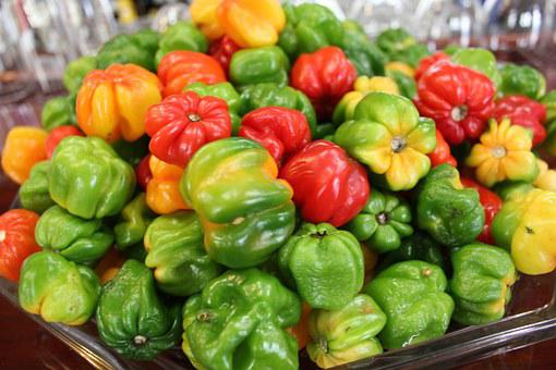 Peppers, Food, Vegetables, Harvest, Fresh, Healthy