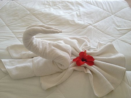 Swan, Towel, Flower, Holiday, Hotel, Bed, Djerba