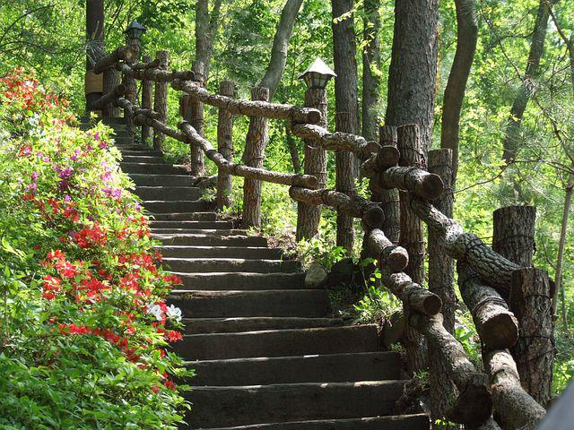 Stairs, Woodland Stairs, Wooden Stairs
