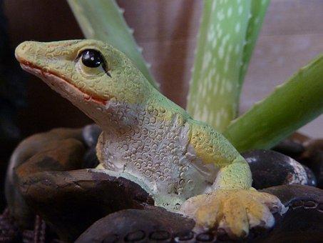 Aloe Vera, Plant, Pot, Stony Lizard, Aloe, Sculpture