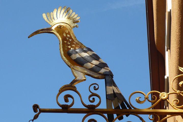 Signboard, Figurehead, Bird, Sign