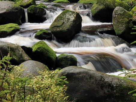 Water, Stones, Stone, Flowing, River, Forest, Trees