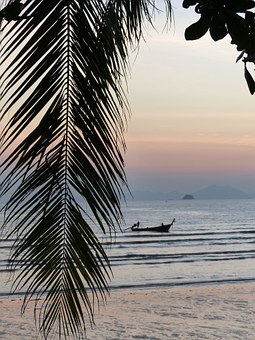 Palm Leaf, Sunset, Ao Nang Beach, Krabi, Thailand