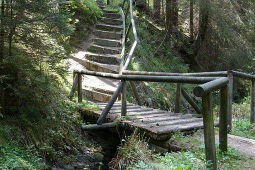 Bridge, Wood, Old, Grumbach Pond, Forest