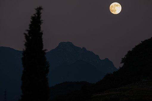 Moon, Cypress, Mountains, Full Moon, Romantic, Night