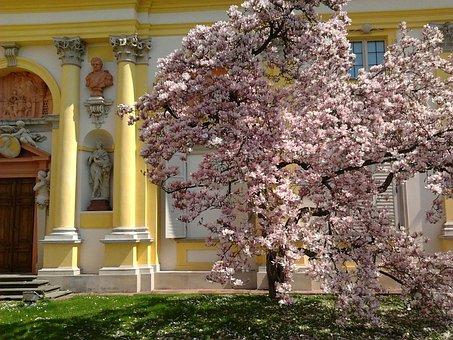 Warsaw, Poland, Wilanow Palace, Building, Landmark