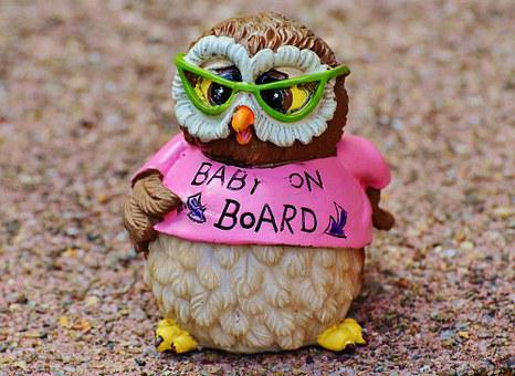 Owl, Baby, Pregnant, Baby Belly, Pregnancy, Funny