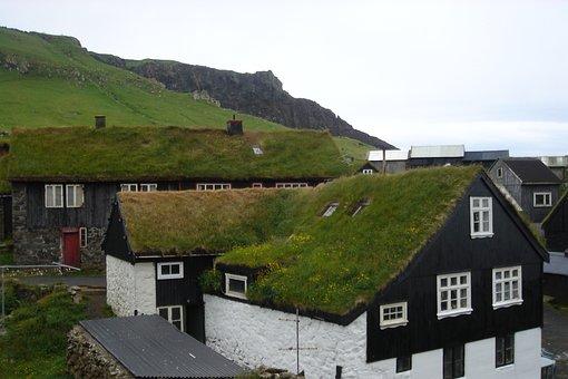 Grass, Faroe, Islands