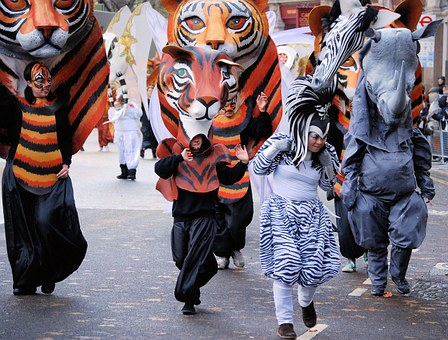 Tiger, Mask, Costume, Parade, Face, Cat Face, Carnival