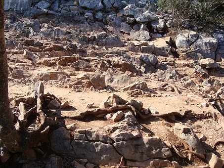 Rocky Road, Road, Path, Stone, Our Lady Of Medjugorje