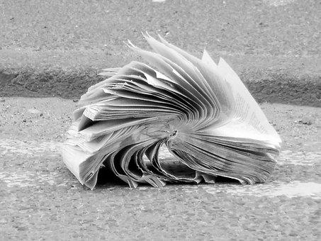 Book, Abandoned, Crumpled