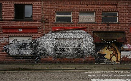 Geisterstadt Doel In Belgium, Rat, Graffiti