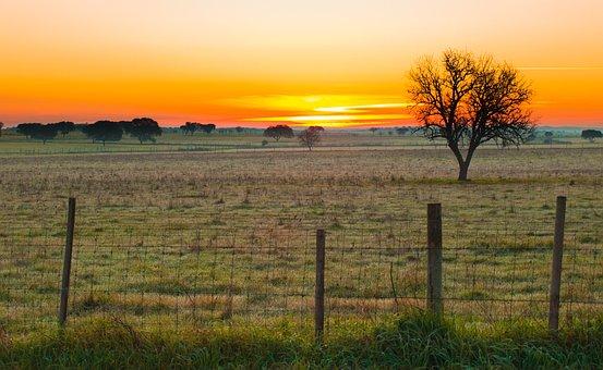 Alentejo, Portugal, Sunrise, Plains, Landscape