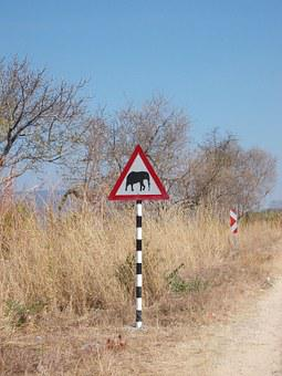 South Africa, Elephant, Traffic Sign