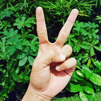 Emotion, Holidays, Communication, Two Fingers
