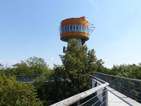 Tree Crown Path, Hainich, Forest, Observation Tower