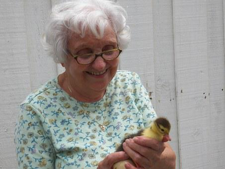 Woman, Old, Old Woman, Duck, Little Duck, Happy