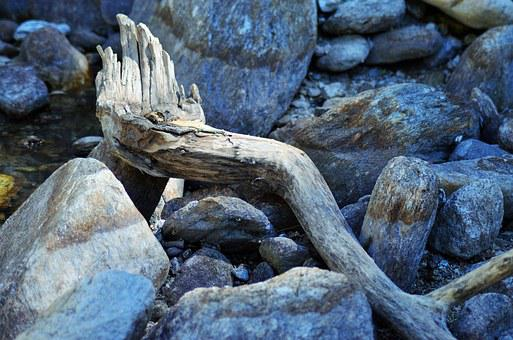 Wood, Branch, Deadwood, Water, River, Nature