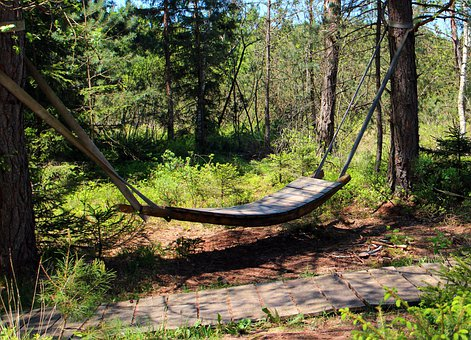 Relaxation, Swing, Hammock, Rest, Sleep, Forest