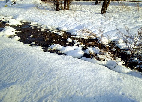Winter, Snow, Thawed Patches, Nature