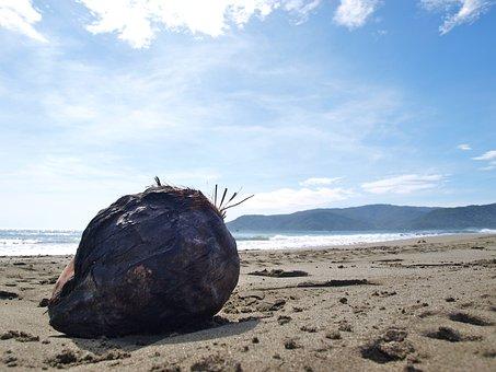 Stone, Rock, Beach, Philippines, Tropical, Sea, Ocean