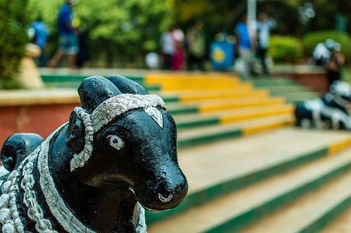 Bull, Shrine, Nandi, India, Temple, Figure, Statue