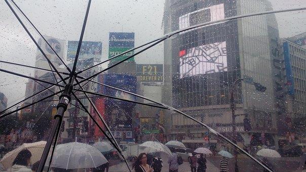 Japan, Tokyo, Shibuya, Rain, Umbrella, Transparent