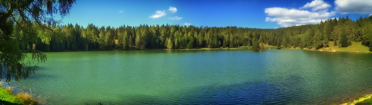 Lake Felixer, Scenic, Italy, Forest Trees, Woods, Lake