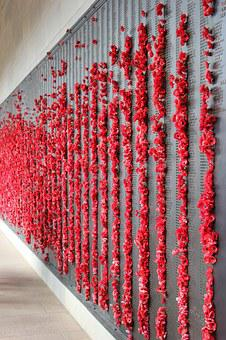Poppies, Memorial, War, Remembrance, Anzac, Military