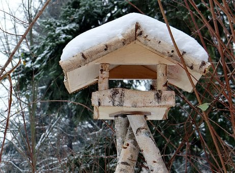 Aviary, Forest, Winter, Shelter, Wintry, Snow