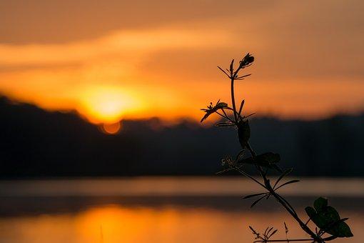 Sunrise, Orange, Clouds, Sky, Night, Morning, Spring