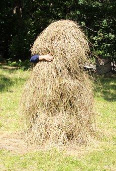 Haystack, Yoda, Pile, Hay, Feed, Summer, Pet Food