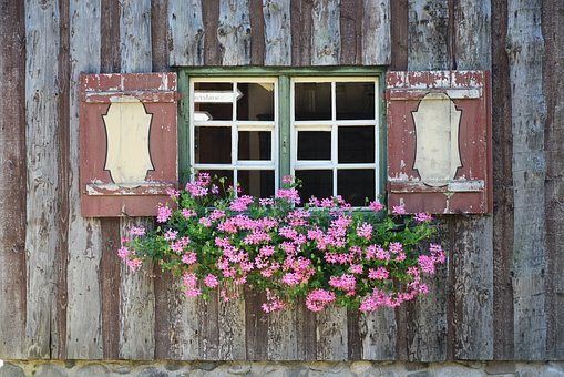 Window, Window Sill, Flowers, Shutters, Atmosphere