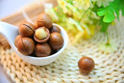 Macadamia Nuts, Nut, Protein, Snack, Food, Cracked