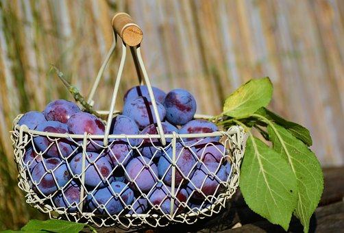 Plums, Fruit Basket, Fruit, Violet, Fruits, Ripe