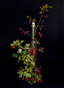 Hawthorn, Crataegus, Berries, Red, Liqueur, Still Lifes