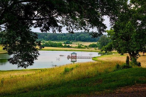 Thornhill Plantation, Alabama, Landscape, Scenic, Pond