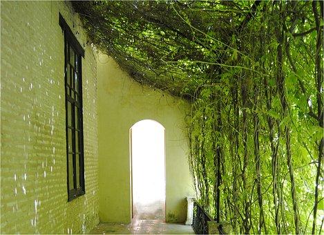 Seville, Green, Alcazar, Hall, Gardening
