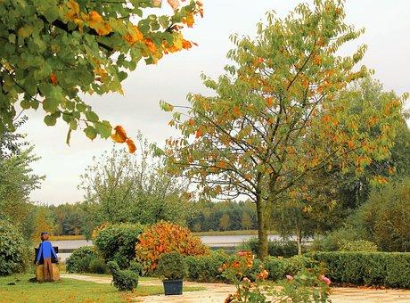 Autumn, Naurbild, Autumn Mood, Autumn On Lake
