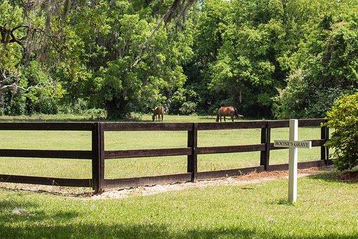 Grave Maker, Cross, Horse, Fence, Landscape, Scenery