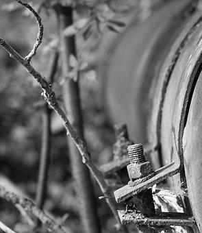 Tube, Pipe, Screw, Matrix, Forest, Branch